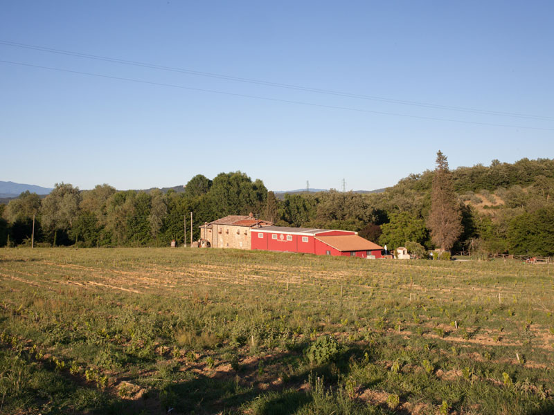 Farmhouse with Restaurant in Tuscany